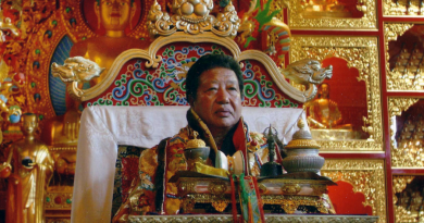 akong rinpoche 1 390x205 - Akong Rinpoche Biography - life Story, Career, Awards, Age, Height