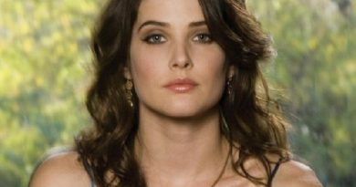 cobie smulders 4 1 390x205 - Cobie Smulders Biography - life Story, Career, Awards, Age, Height