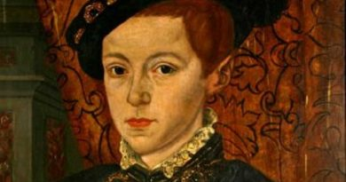 edward vi of england 7 390x205 - Edward VI of England Biography - life Story, Career, Awards, Age, Height