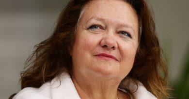 gina rinehart 1 390x205 - Gina Rinehart Biography - life Story, Career, Awards, Age, Height