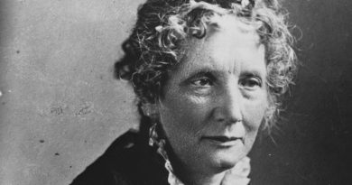 harriet beecher stowe 3 390x205 - Harriet Beecher Stowe Biography - life Story, Career, Awards, Age, Height