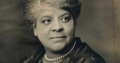 ida b wells 1 1 390x205 - Ida B. Wells Biography - life Story, Career, Awards, Age, Height