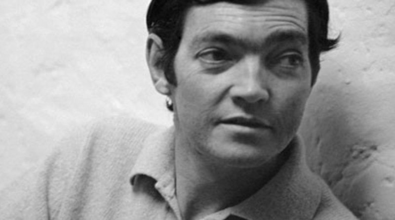 julio cortazar 1 800x445 - Julio Cortazar Biography - life Story, Career, Awards, Age, Height