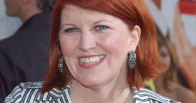 kate flannery 1 390x205 - Kate Flannery Biography - life Story, Career, Awards, Age, Height
