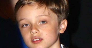 knox leon jolie pitt 1 390x205 - Knox Leon Jolie-Pitt Biography - life Story, Career, Awards, Age, Height