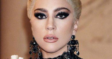 lady gaga 7 390x205 - Lady Gaga Biography - life Story, Career, Awards, Age, Height