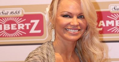 pamela anderson 7 390x205 - Pamela Anderson Biography - life Story, Career, Awards, Age, Height