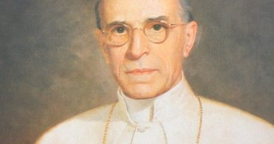 pope pius xii 1 390x205 - Pope Pius XII Biography - life Story, Career, Awards, Age, Height