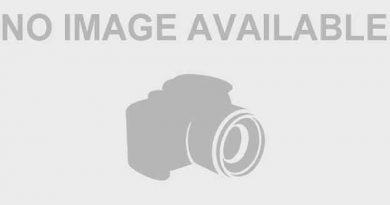 robert zellner 1 1 390x205 - Robert Zellner Biography - life Story, Career, Awards, Age, Height
