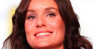 sarah wayne callies 3 390x205 - Sarah Wayne Callies Biography - life Story, Career, Awards, Age, Height