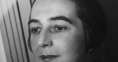 sonia delaunay 1 1 390x205 - Sonia Delaunay Biography - life Story, Career, Awards, Age, Height