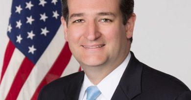 ted cruz 8 390x205 - Ted Cruz Biography - life Story, Career, Awards, Age, Height